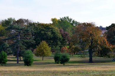 Owl's Head Park